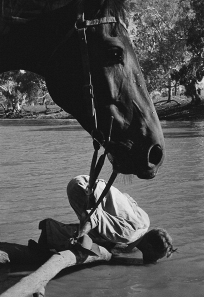 Thirsty Stockman fine art photography
