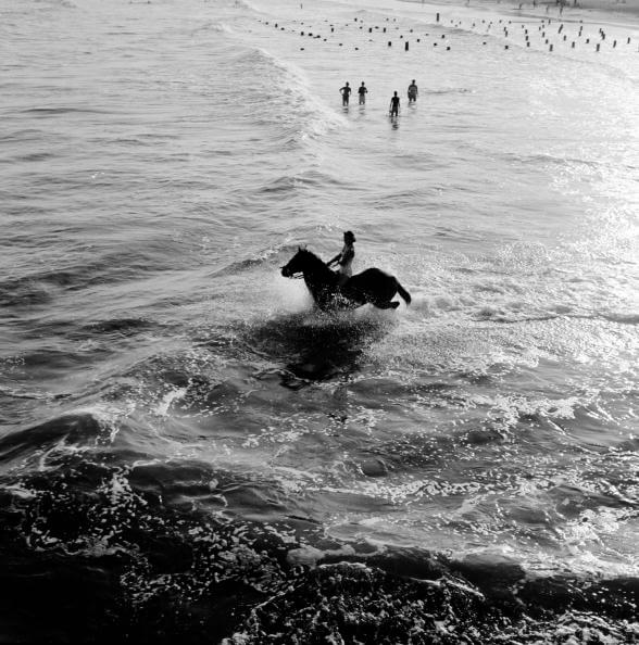 Aquatic Equestrian from Sports fine art photography