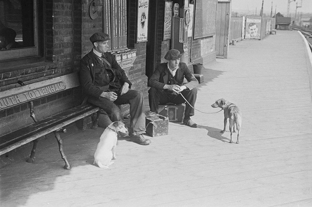The Rat Catchers from Bert Hardy fine art photography