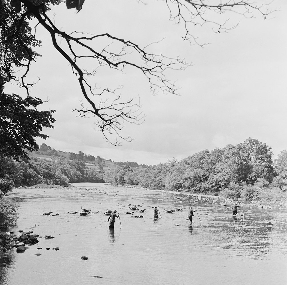 River Crossing from Bert Hardy fine art photography