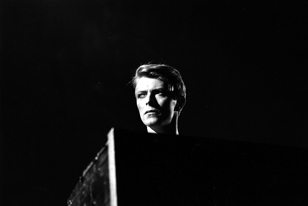 Head of David from Pop fine art photography