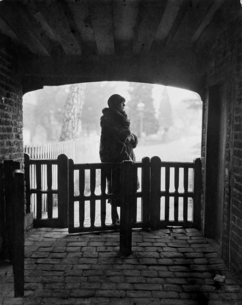 Novak At Gate from Snow fine art photography