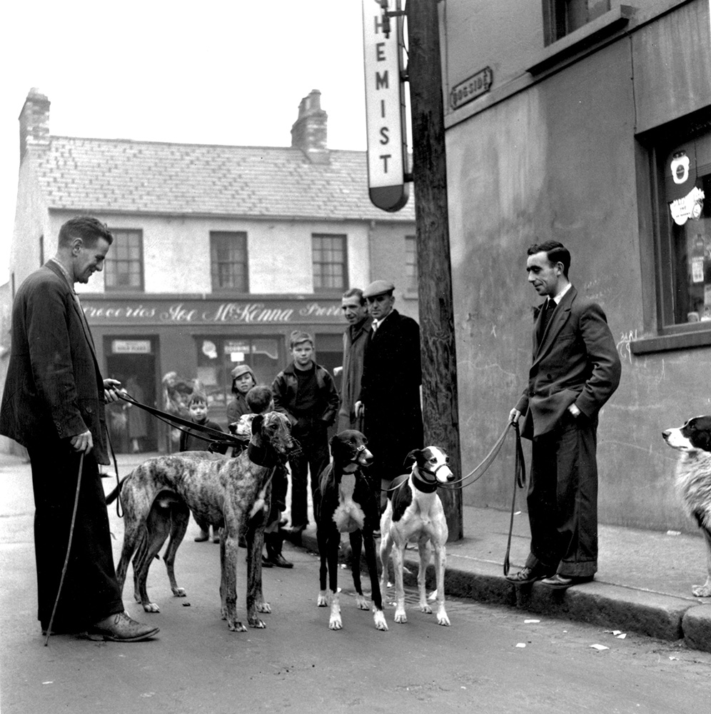 Greyhound Club from Bert Hardy fine art photography