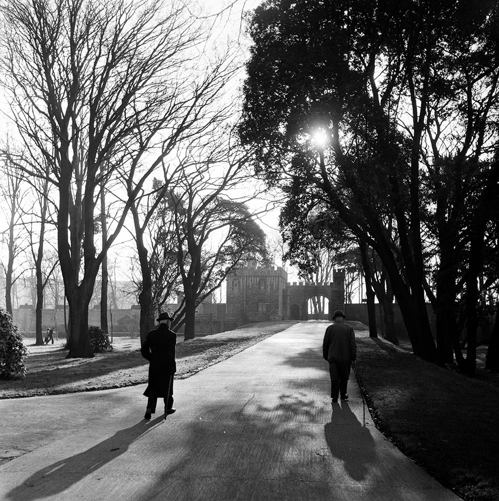 Castle Grounds from Bert Hardy fine art photography