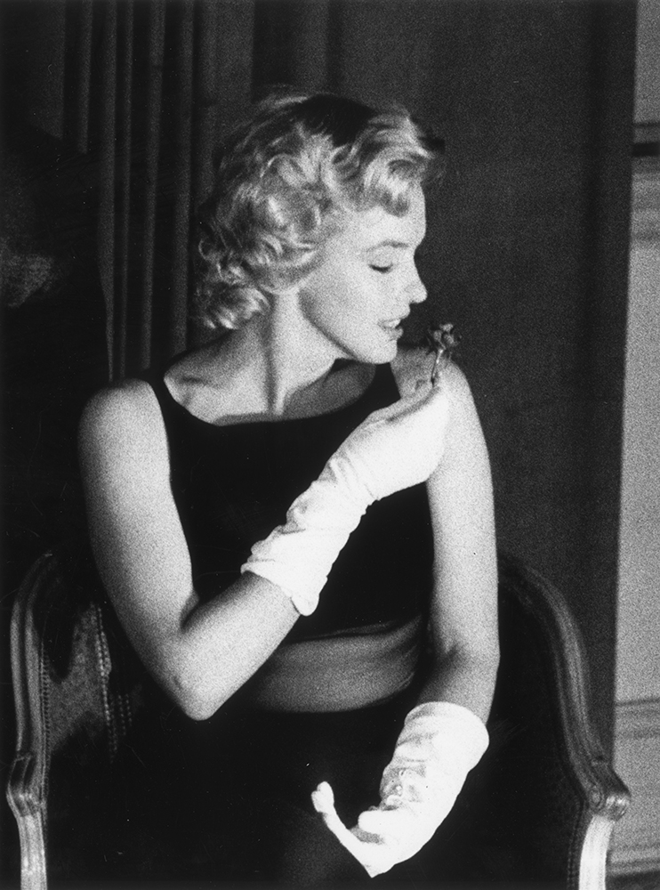 Sweet Smelling from Marilyn Monroe fine art photography