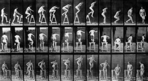 Muybridge Photograph